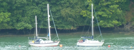 Our Moorings Location - River Dart Moorings, Dartmouth, Devon